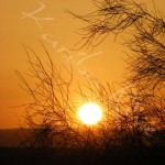 Coucher de soleil - JORDANIE